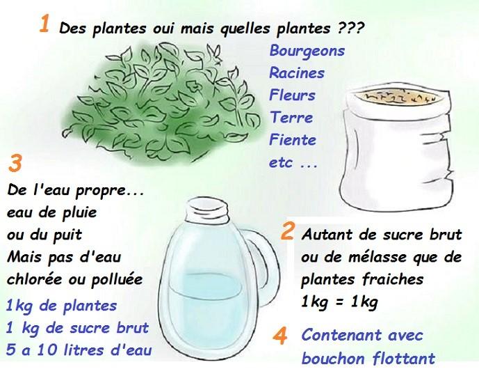 Les moyens nationaux contre le microorganisme végétal lessence